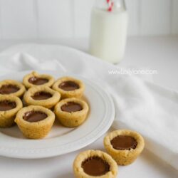 Reese's Quiches