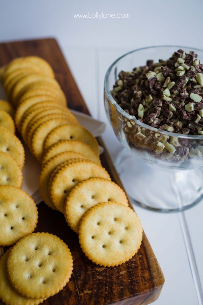 Easy Knock-Off Homemade Thin Mint Girl Scout Cookie recipe!