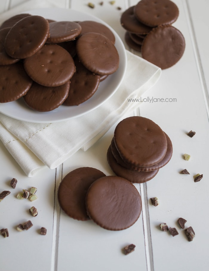 Easy Knock-Off Thin Mint Girl Scout Cookie recipe! Just TWO ingredients, SOOO good!