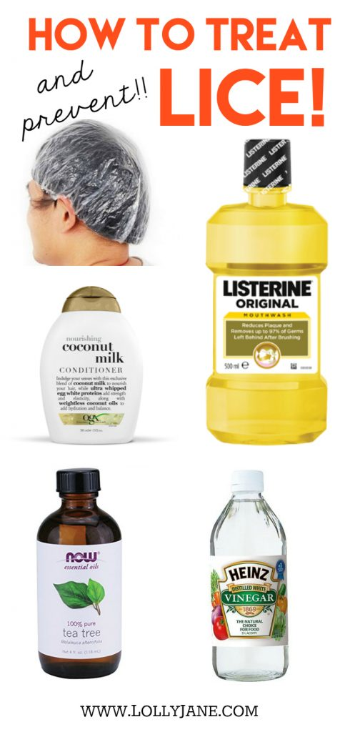 How to treat lice!! How to prevent lice! You may have all of