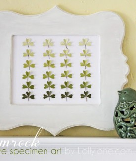 Shamrock St. Patricks Day ombre specimen art by Lolly Jane