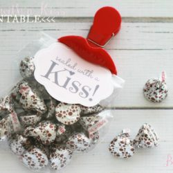 Sealed with a Kiss valentine