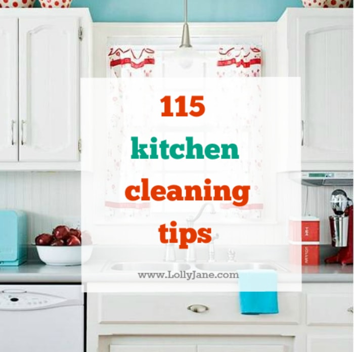 Over 115 Kitchen Cleaning Tips To Keep Your Kitchen Organized, Germ Free  And Great Ideas