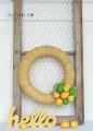 Cute chevron citrus wreath by LollyJane.com