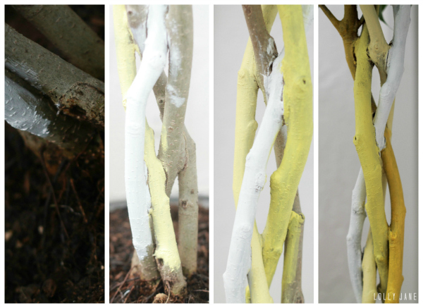 DIY ombre painted tree trunk