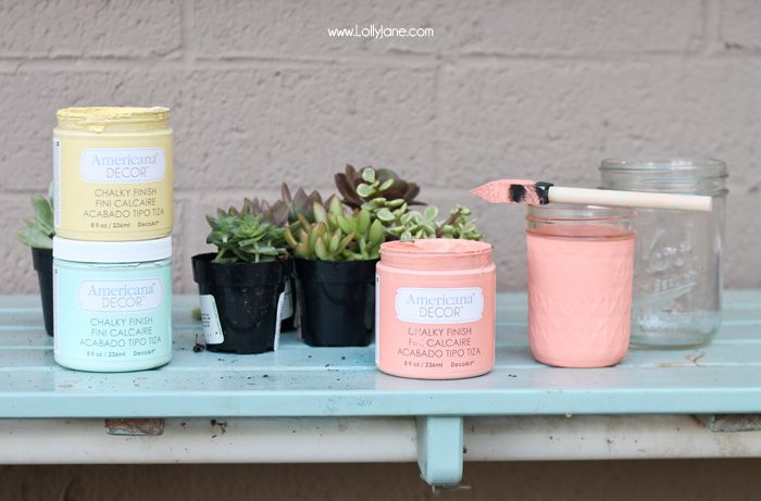 Gorgeous succulents! See how lollyjane.com transformed them with chalky paint!