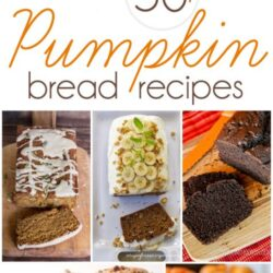 the best pumpkin bread recipes | roundup