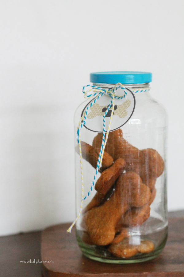 dog-treat-gift-idea