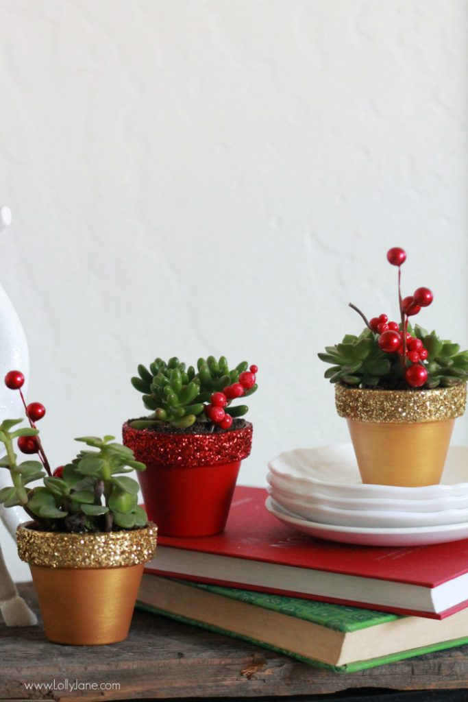 DIY glitter succulents | Easy Christmas decor idea, painted pots with glitter tops.