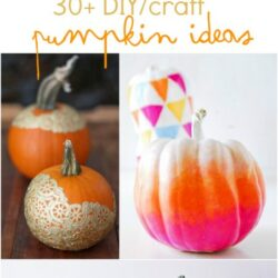 30+ DIY/craft pumpkin ideas