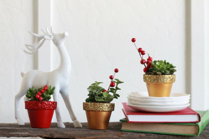 Christmas Succulent Gift Ideas.Yellowblissroad Com