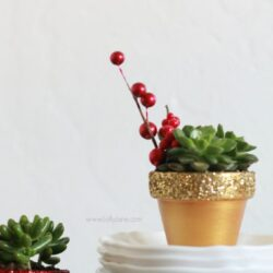 DIY | glitter succulent planters