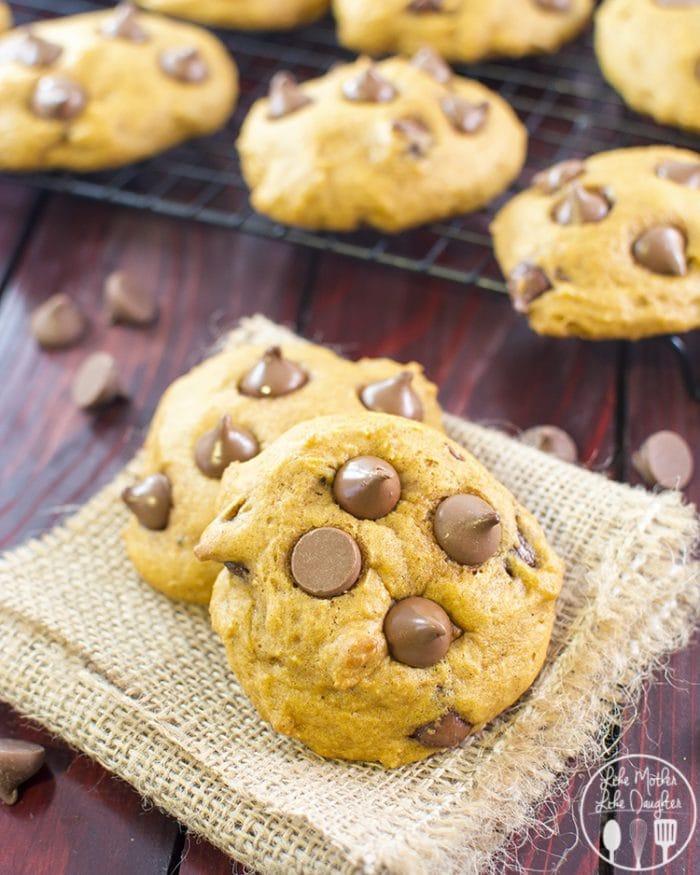 Flavorful Pumpkin Chocolate Chip Cookie Recipe