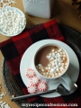 EASY and yummy PEPPERMINT hot chocolate recipe! This is THE hot cocoa recipe this Christmas season!
