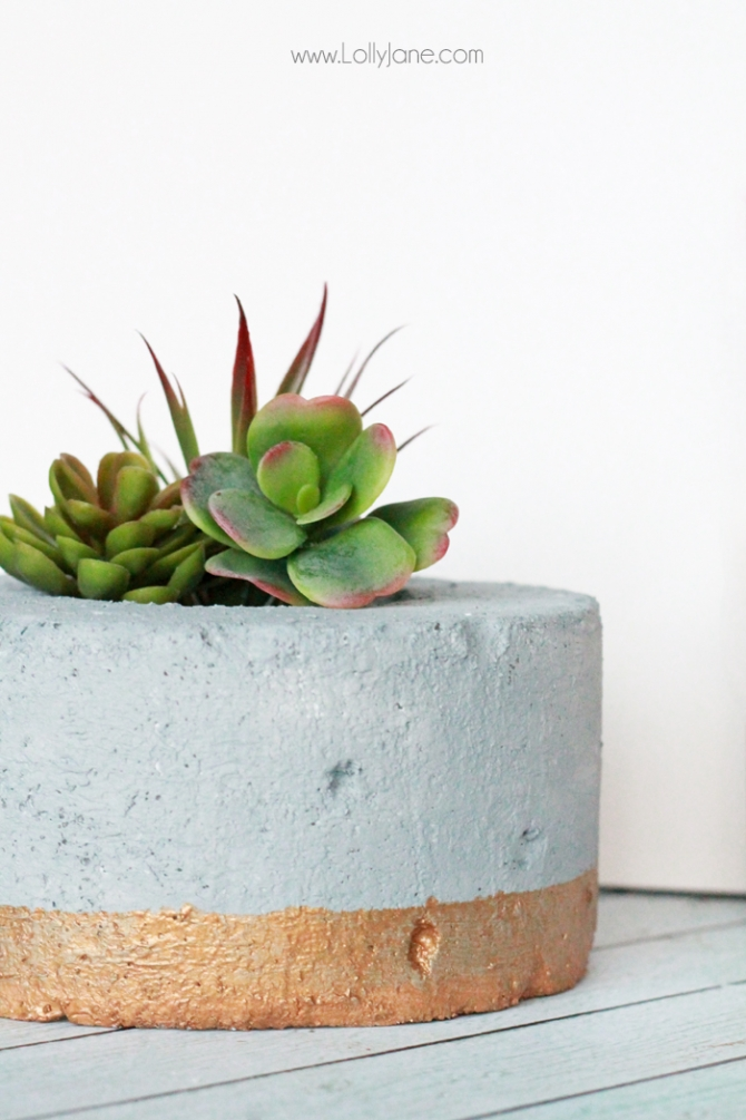 DIY Gold-Dipped Faux Concrete Succulent Planter.... so cool that it