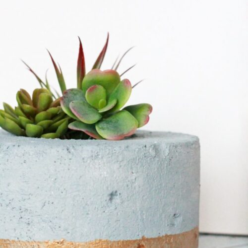 DIY Gold-Dipped Faux Concrete Succulent Planter.... so cool that it's made from styrofoam!!! Gotta try this!