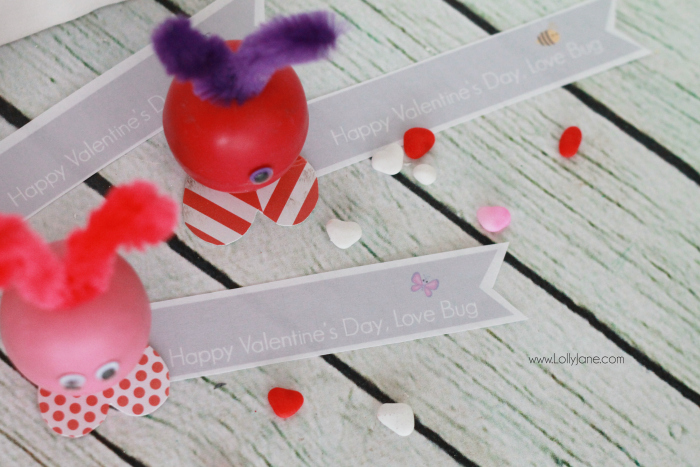 eEOS love bug Valentines, these are so dang cute and really easy to make! Makes a fun Valentine gift, great for kids or a cute teacher gift or fun coworker gift as well! Click through for the final product! BONUS: Includes FREE printable tags!