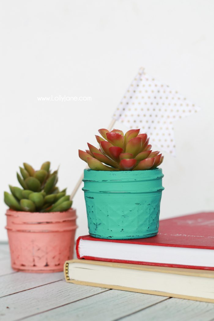 DIY Painted Planted Plastic Succulents... quick + easy DIY gift or decor!