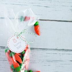 bunny bait free printable tags