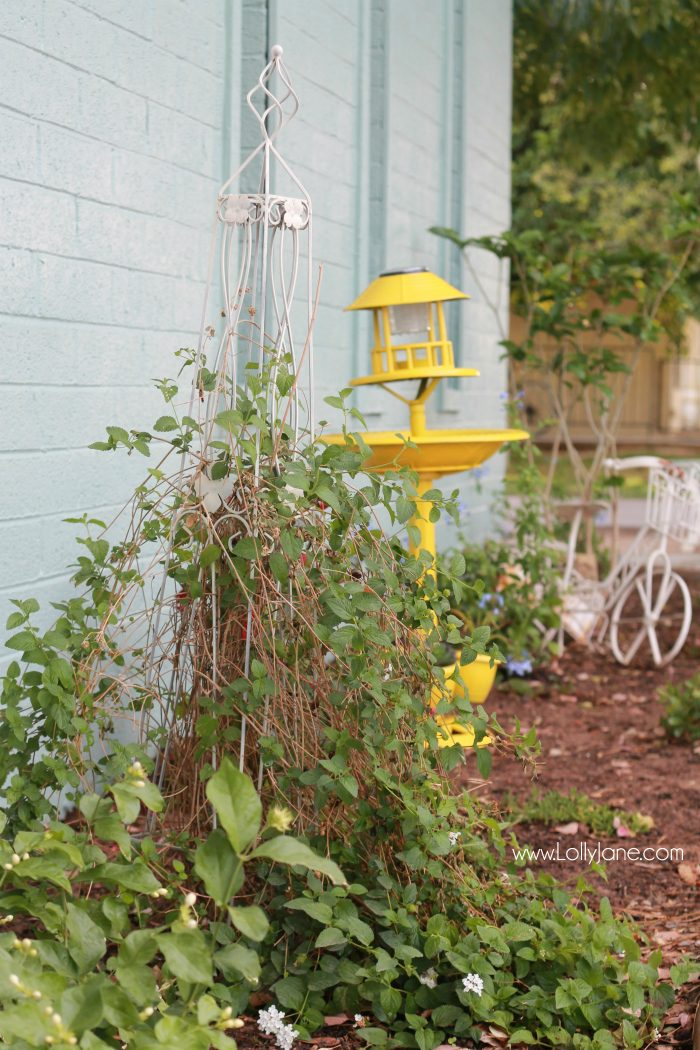 Front porch garden decor and ideas! Plants to use for heavily shaded areas. #greenthumbchallenge