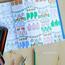 Cute adult coloring books with perfect coloring pencils!