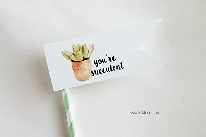 "Free ""you're succulent"" printable tags. Love these cute Valentine tags. Free printable to let your love know you think they're succulent! Free printable tags!"