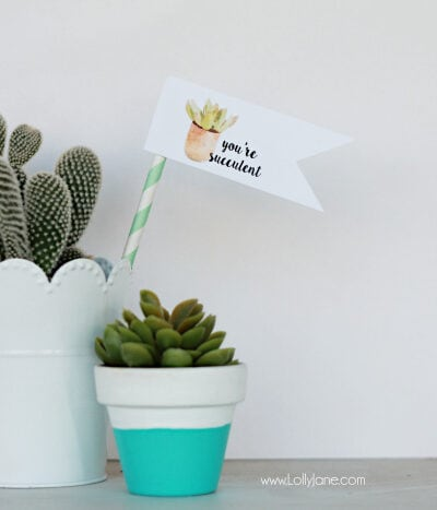"""Free """"you're succulent"""" printable tags. Love these cute Valentine tags. Free printable to let your love know you think they're succulent! Free printable tags! Cute succulent gift idea!"""
