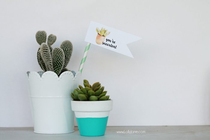"Free ""you're succulent"" printable tags. Love these cute Valentine tags. Free printable to let your love know you think they're succulent! Free printable tags! Cute succulent gift idea!"
