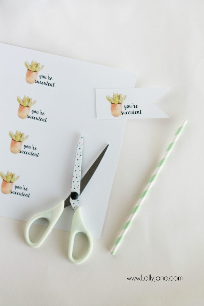 """Free """"you're succulent"""" printable tags. Love these cute Valentine tags. Free printable to let your love know you think they're succulent! Free printable tags!"""
