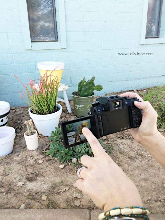 How to capture sharp action shots! This camera is killer for scoring sharp action shots taken straight from the video!! No more missing that perfect shot by mere seconds! Bonus: set the camera to focus on your focal point with the touch of a finger!