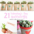 21 Valentine's Day succulent. A collection of inexpensive Valentine's Day gifts. Easy succulent gift ideas, many using free printable tags!