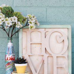 DIY Coke Bottle Vase Key Holder