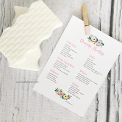 free cleaning checklist, dirty little secret
