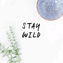 Stay Wild Free Printable