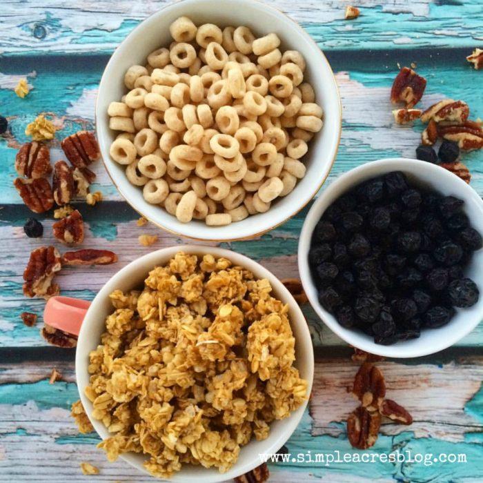 Homemade Granola Bars recipe. Easy and yummy on the go snacks! Great kid snack idea!