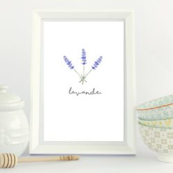 Free Kitchen Home Decor Printables
