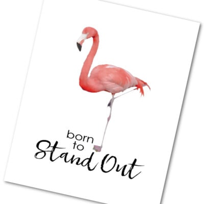 Born to stand out flamingo print + party ideas!