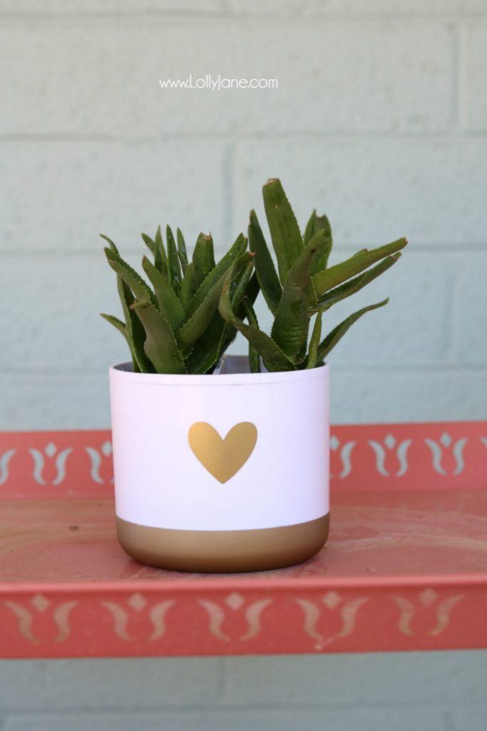 DIY toothbrush holder succulent! Turn a toothbrush holder into a succulent planter, so cute! Love this succulent hack!