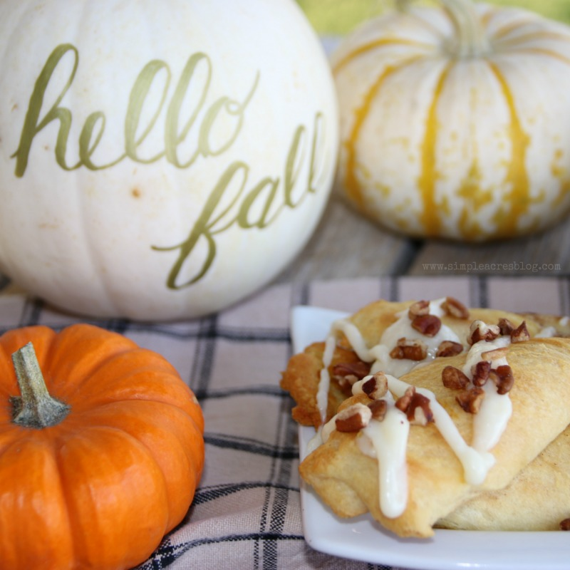 Pumpkin Pecan Twists with Cream Cheese Frosting. The perfect fall dessert, yum! Love this pecan dessert, mm!