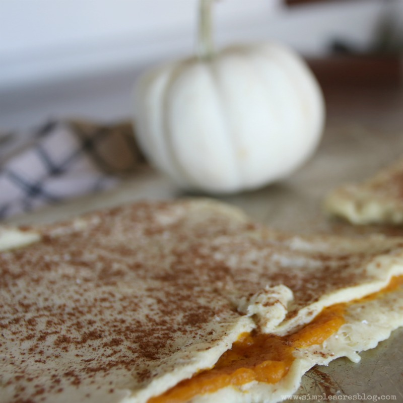 Pumpkin Pie Twists with Cream Cheese Frosting