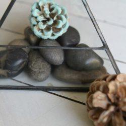 DIY Pinecone Succulents