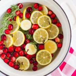 Citrus Holiday Potpourri