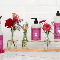free mrs meyers seasonal scents