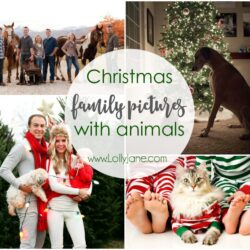 Christmas family pictures with animals