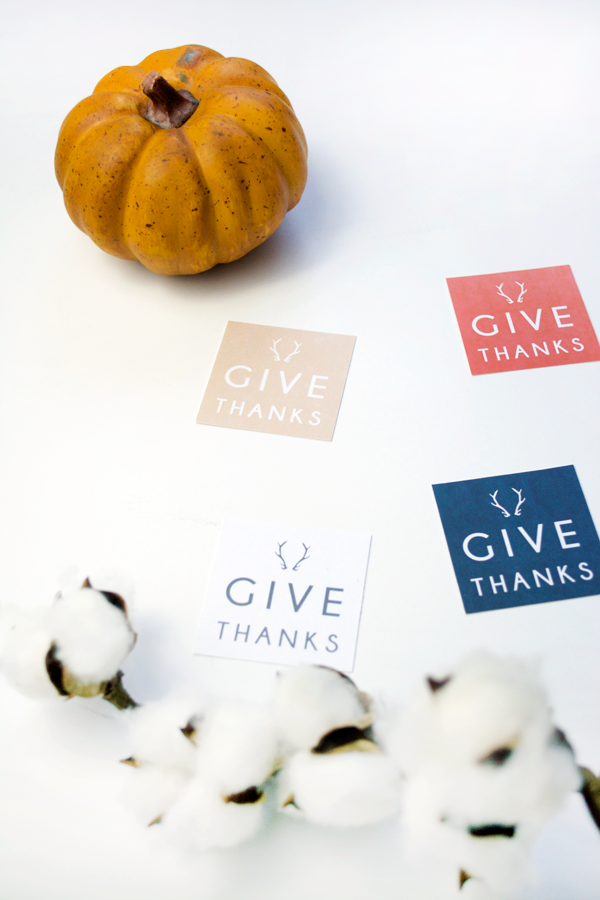 Give Thanks free printables tags. Download these free tags to use as name card holders, wrap around a napkin ring or write what you're thankful for. Cute Thanksgiving dinner idea!
