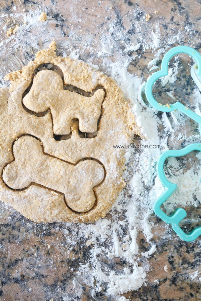 Easy Dog Treat Cookies, only 2 ingredients and pups of all breeds will love them!