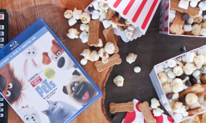 "YUMMY Movie Popcorn mix with assorted ""toppings"" PLUS a free Secret Life of Pets movie themed DIY treat holder!"