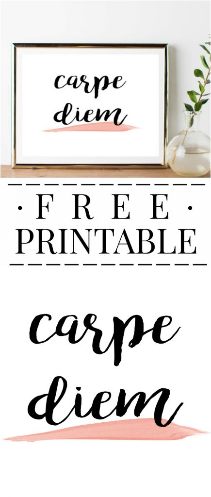 Carpe Diem free printable! Love this fun, free digital download.