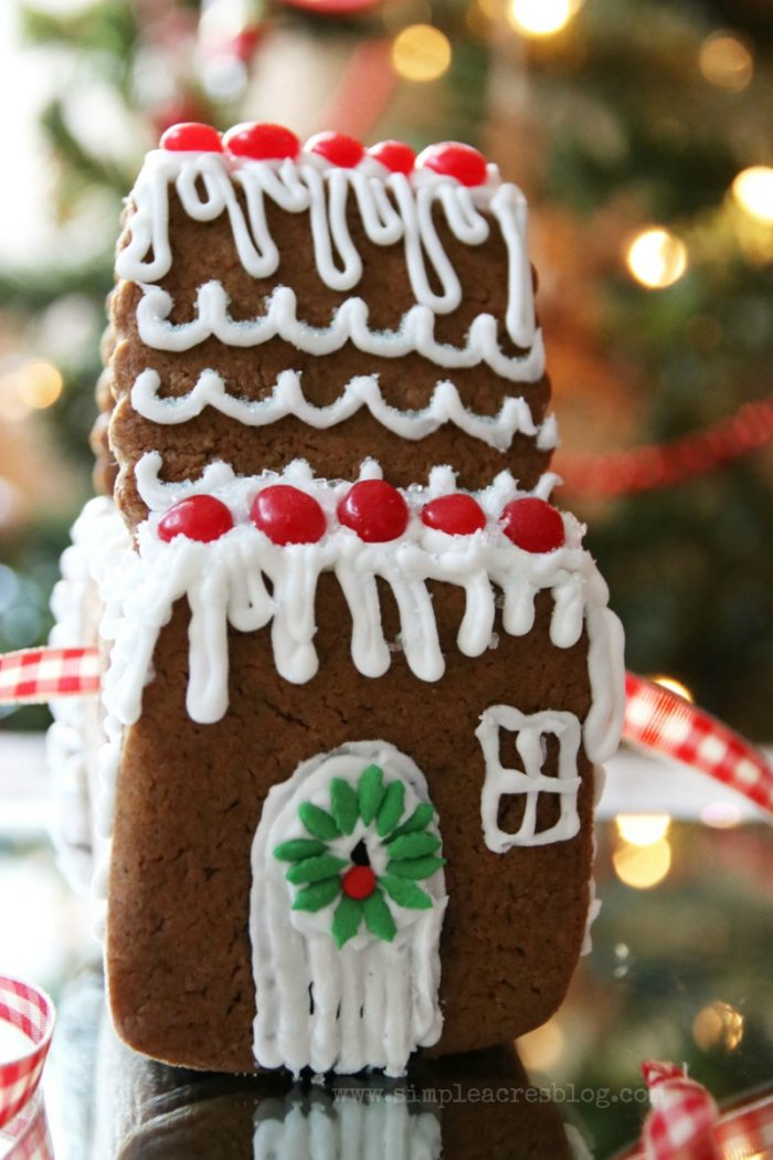 Yummy and EASY Gingerbread Cookie Recipe!