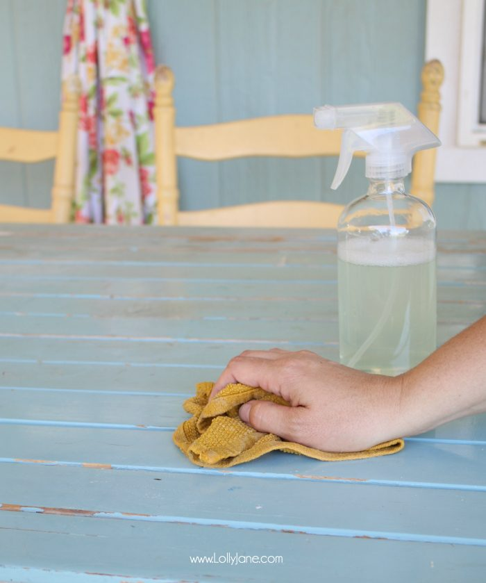 Awesome BBQ or outdoor party tips! Before you get started, clean with this awesome product!